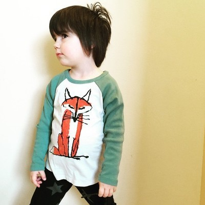 2016 fashion brand spring popular boys girls children shirts 3 color long sleeve fox pattern sweaters high quality baby clothes