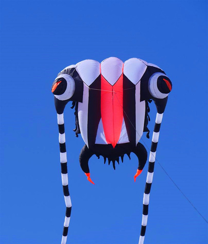 free shipping high quality 16square meters trilobites soft kite ripstop nylon fabric kite easy hcxkite factory tadpoles toys цена 2017