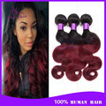 4 bundles brazilian body wave ombre hair extension 6a grace hair brazilian body wave Cheap human hair 100g bundles no shed