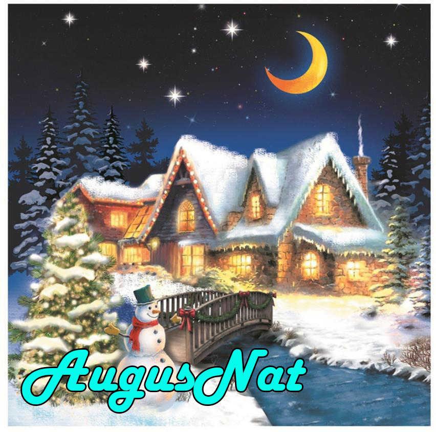 ירח יהלומי ציור תרגיל מלא חג המולד קוטג 'daimond רקמת שלג borderie דיאמנט plein נוף בד צבע מתנה