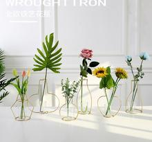 1PC Home Party Vase Abstract Gold Lines Minimalist Iron Glass Dried Flower Racks Nordic Decor. JL 226