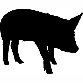 15.5X12.2CM SIMPLE AND HONEST PIG Vinyl Car Sticker Decal Fun Car-styling S6-2159 image