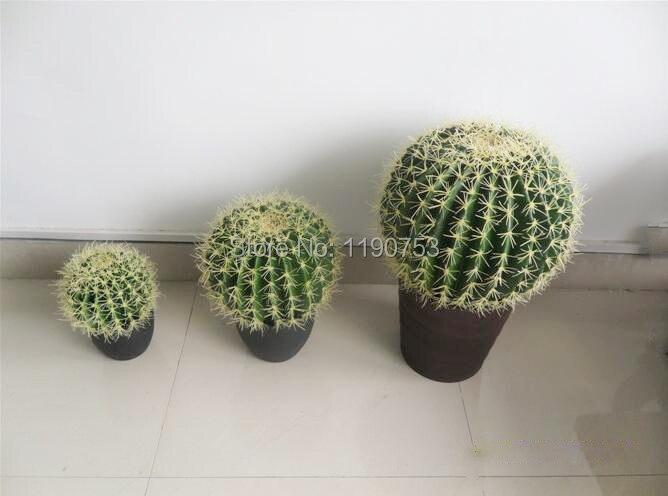 Online Shop Simulation Succulents Desert Cactus Plant Home Decor Wholesale Potted Home Floor Window Decoration Desert Plant Aliexpress Mobile