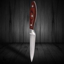 Top Qualität 3,5 zoll Damaskus Messer 71 Schichten von Damaskus Stahl Küche Obstmesser Mit Farbe Holz Griff Kochmesser