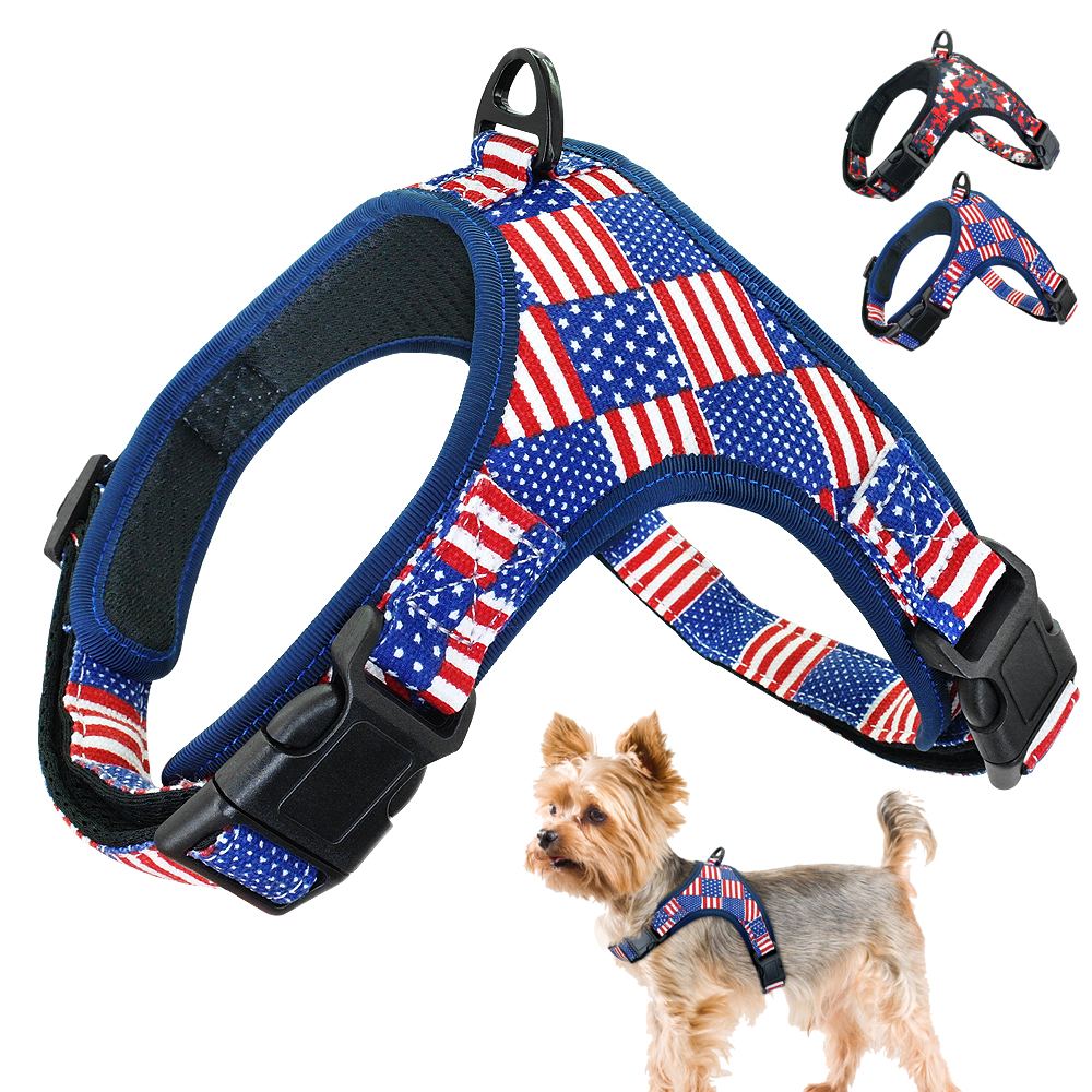 Objective Dog Cat Harness And Leash With Padded Vest Reflective Adjustable Soft Mesh Pet Walking Harnesses For Small Medium Dogs Chihuahua Pet Products Harnesses