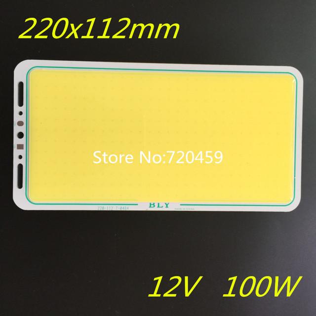 2 pcs LEVOU módulo cob LED luzes brilhantes placa 2mm de espessura DC12V 100 W Tira levou chip COB Módulo de LED luz do painel 220x112mm