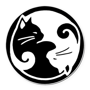 CafePress Round Car Magnet - Yin Yang Cats Round Car Magnet - White 5.5'' White windows die cut decal image