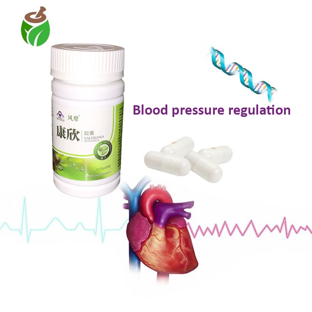 5 pcs Anti hypertension softgel pills control high blood pressure treatment Chinese medicine balance blood fat vessel cleansing image