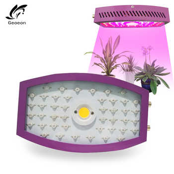 Geoeon 2019 New 1000W Led Plant Flower Lamp Dimmable Indoor Full Spectrum Led LED Plant All Stage Grow Light Led Grow Light - Category 🛒 Lights & Lighting