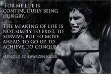 Arnold Schwarzenegger Motivational Quote Art Wall Decor Silk Print Poster