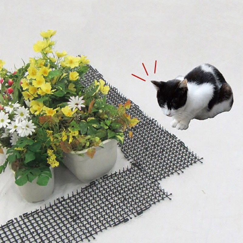 Image 2 - Garden Cat Dog Scat Mat Cats And Dogs Repellent Mat Plastic Spike Keeping Cats Dogs From Digging Flower Plant Protective Fence-in Repellents from Home & Garden