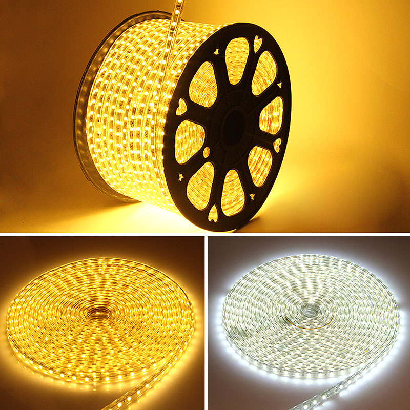 AC 220V Silicone Tube Waterproof 5050 SMD LED Strip light Tape 1/2/3/4/5/6/7/8/9/10/15/20 60LEDs/M + EU Power Plug Factory price