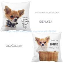 Conjunto De 2 Precioso Perro Chihuahua Letter Print Cojines Personalizados Para Regalo de Cumpleaños de Almohadas Decorativas Almofada Coussin