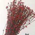 Pip Berry Garland Vine Stem Red color Pip Berries,Pip Berry,Fall Wreath,Wreath Material,Flower crown