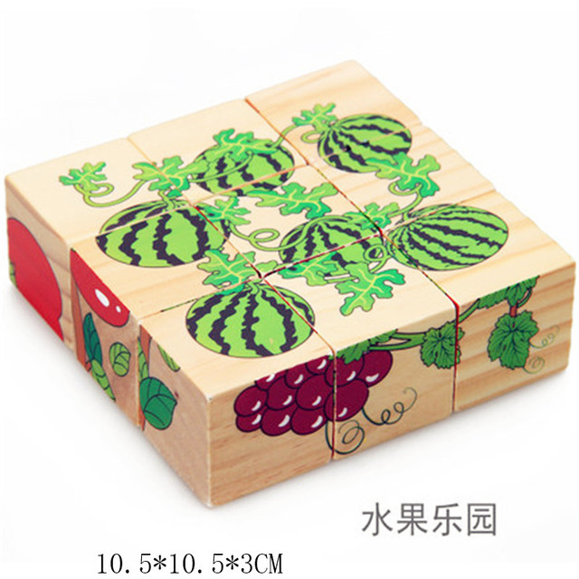 Educational 3D  Wooden Puzzle Toy