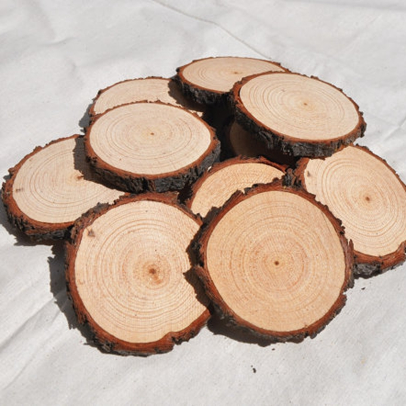 50 Pcs Craft Wood Slices With Tree Bark Blank Tree Log Discs Cutout Wood Circles Diy