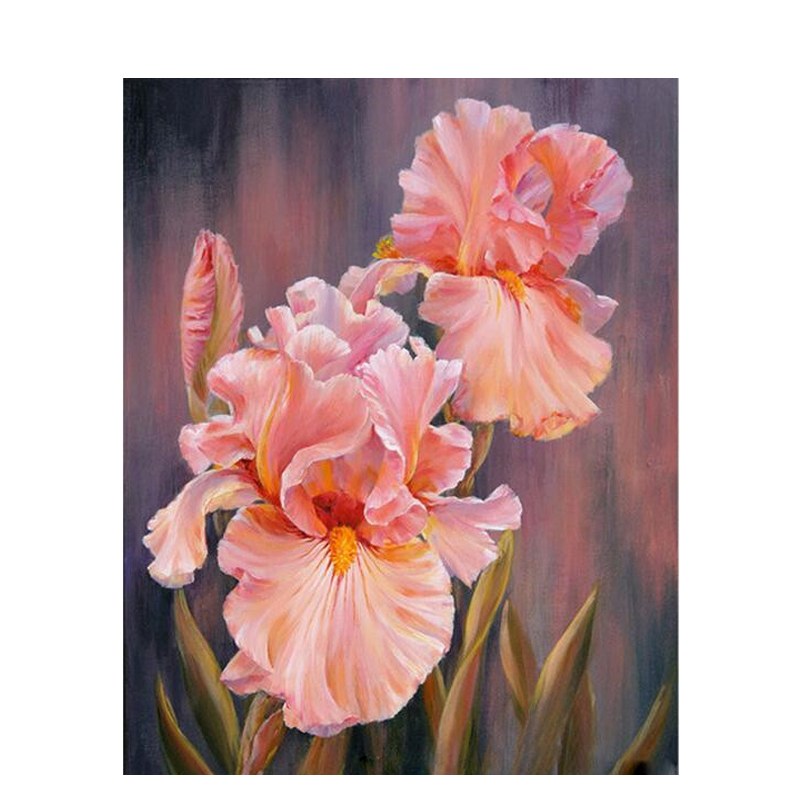 Pink  In The Dream Hand Made Paint High Quality Canvas Beautiful Painting By Numbers Surprise Gift Great Accomplishment