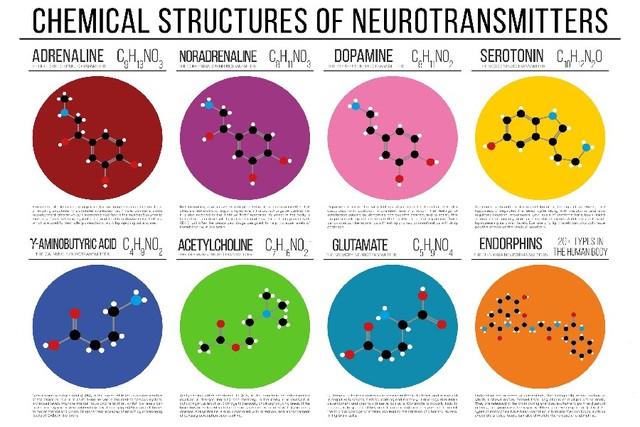 Science Chemistry Chemical Structure Diagrams Poster Silk Fabric Art