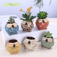 6pc Kiln glaze Mini owl flower pot Personality Cute succulent plant thumb flowerpot Europe retro Creative home decoration crafts