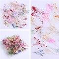 10 Flores Secas Cornflower Pçs/caixa Bem Preservado Flor 3D DIY Manicure Nail Art Decoração