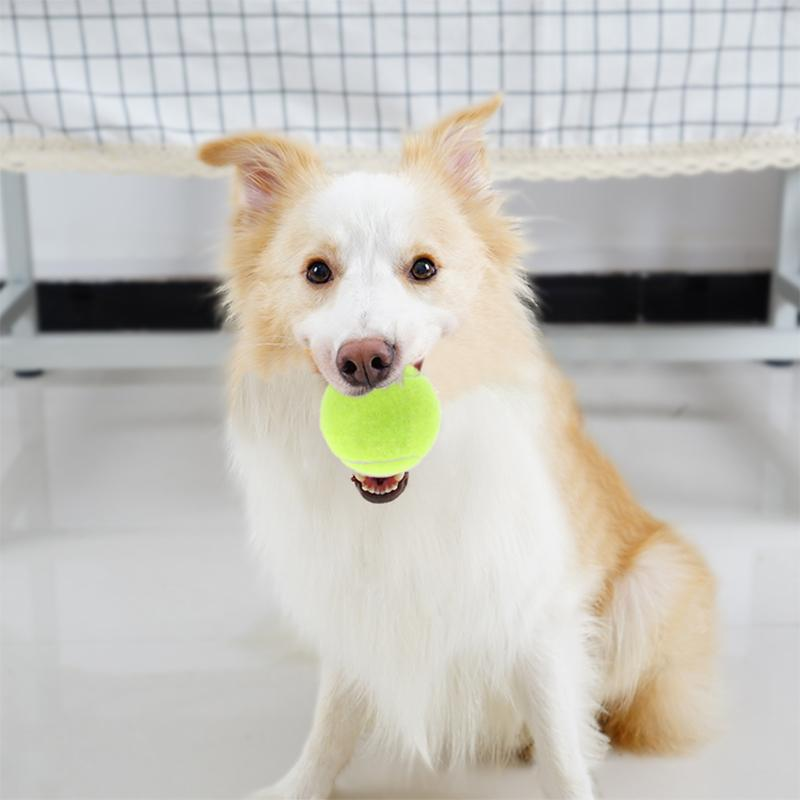 6cm Dog Tennis Ball Giant Pet Toy Tennis Ball Dog Run Fetch Throw Chew Bite Resistant Tr ...