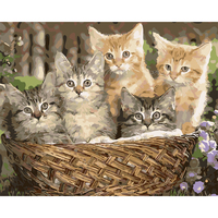 Digital Diy Oil Painting By Numbers The Cats Wall Decor Picture On Canvas Oil Paint Coloring