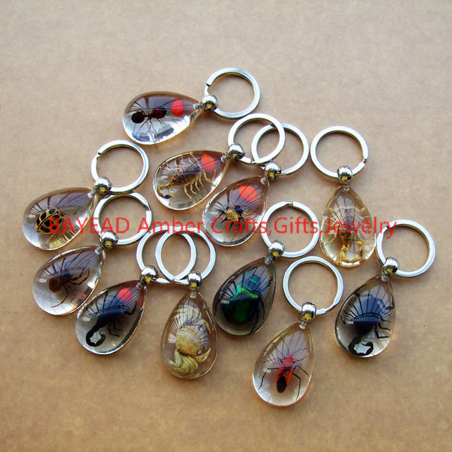 Real Beetle Bug Keychains Drop Shape M Size Insect Amber Resin Keychain Bug  Keyring Free Shipping-in Key Chains from Jewelry   Accessories on  Aliexpress.com ... b80e05b4ccb1