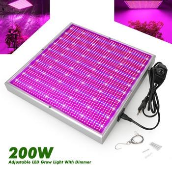 200 W LED Tumbuh Cahaya Spektrum Penuh Dimmable 2000 LED Tumbuh Panel Phyto Lampu untuk Tanaman Hidroponik Bunga Tumbuh Tenda + Dimmer