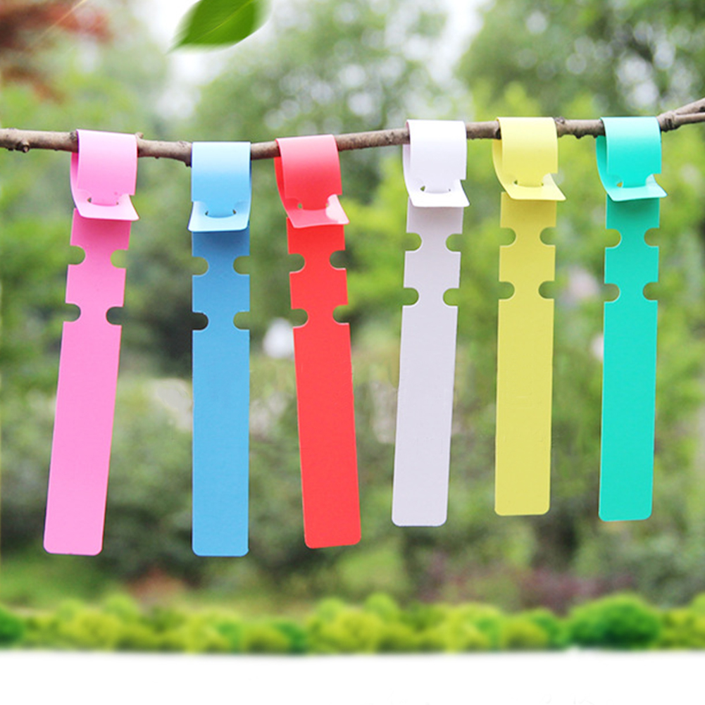 100Pcs Ring Set Waterproof Hang Tag Plant Markers PVC NURSERY Reusable Durable Flower Gardening Label Classification Tool
