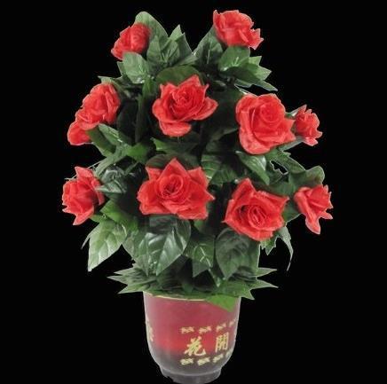 Livraison gratuite! Télécommande Fleur Bush 20 Fleurs, Tours de Magie, de Magie, de Plaisir, Accessoires, mentalisme, Illusion