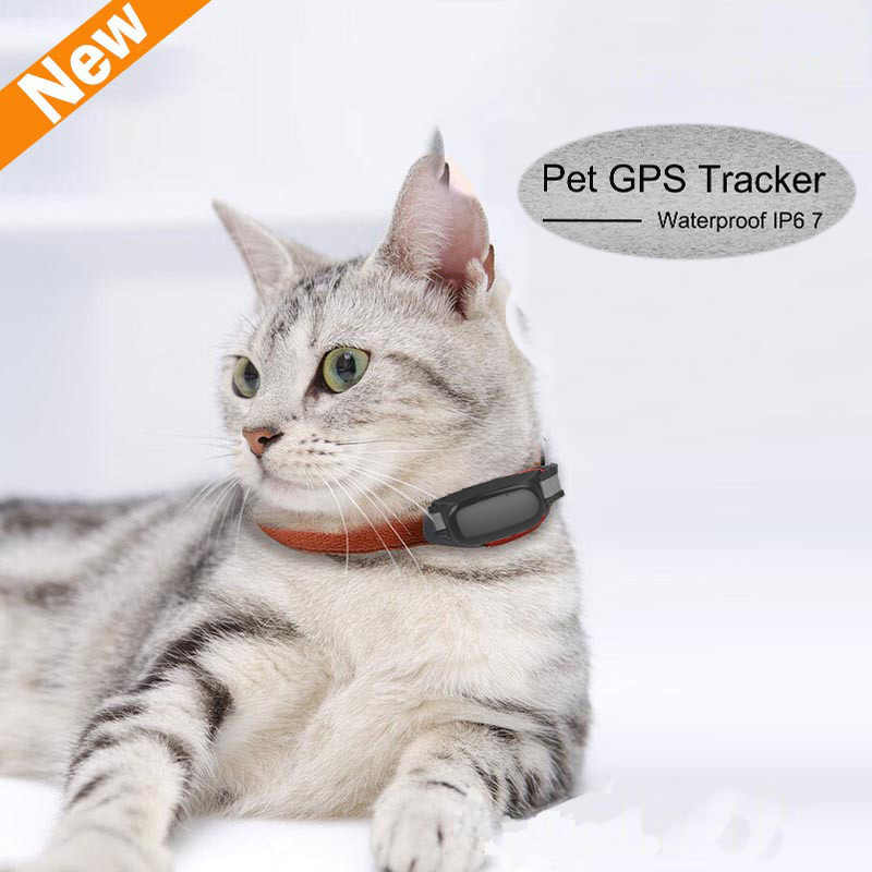 Free Shipping Waterproof GPS Tracker for Cats with Collar