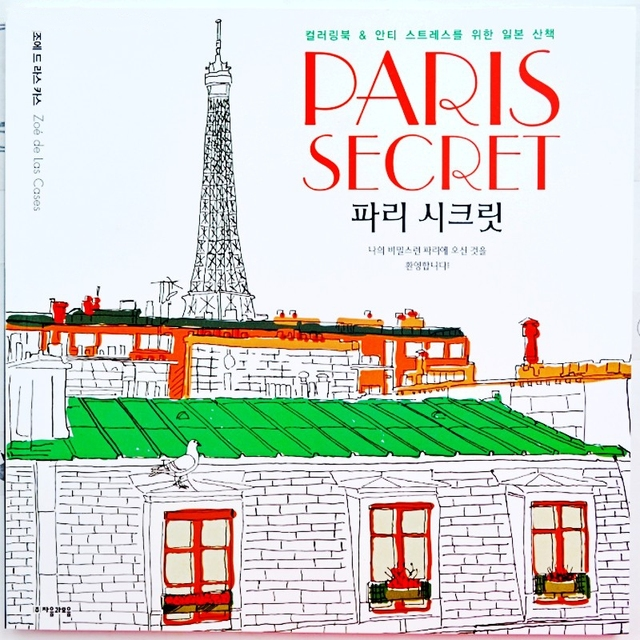 96 Pages PARIS SECRET Coloring Book For Children Adult Fashion Relieve Stress Painting Drawing Antistress Books