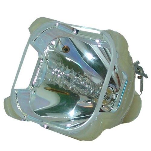TLPL55 TLP-L55 For Toshiba TLP-261M TLP-550 TLP-550C TLP-551 TLP-551C TLP-560 TLP-560D TLP-561 TLP-561D Projector Lamp BUlb проектор toshiba tlp x2000 лампу
