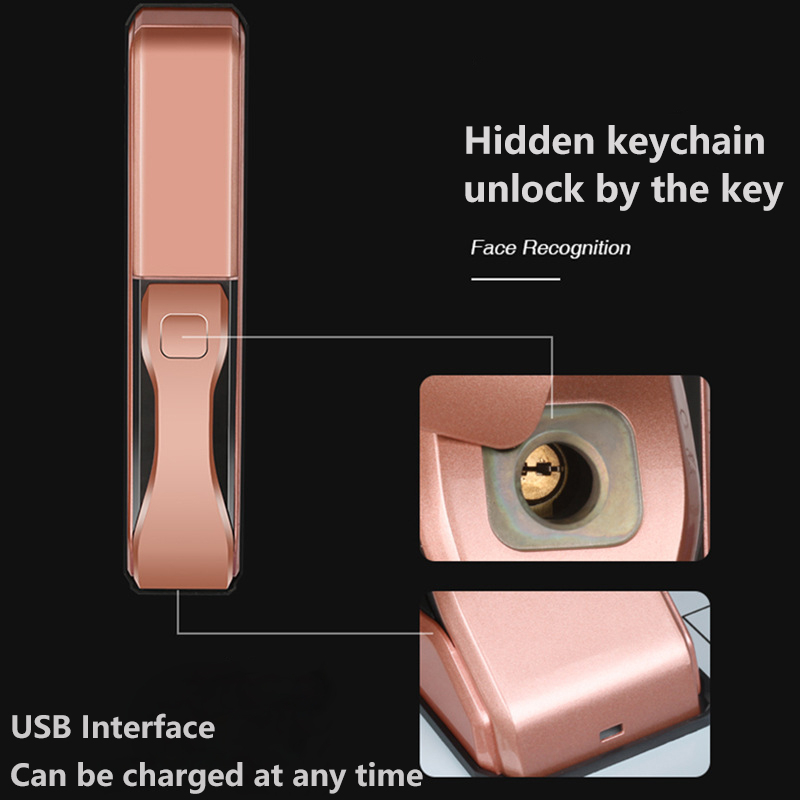 High Grade Face Recognition Intelligent Lock Apartment Home Anti-theft Security Door Electronic Password Smart Lock