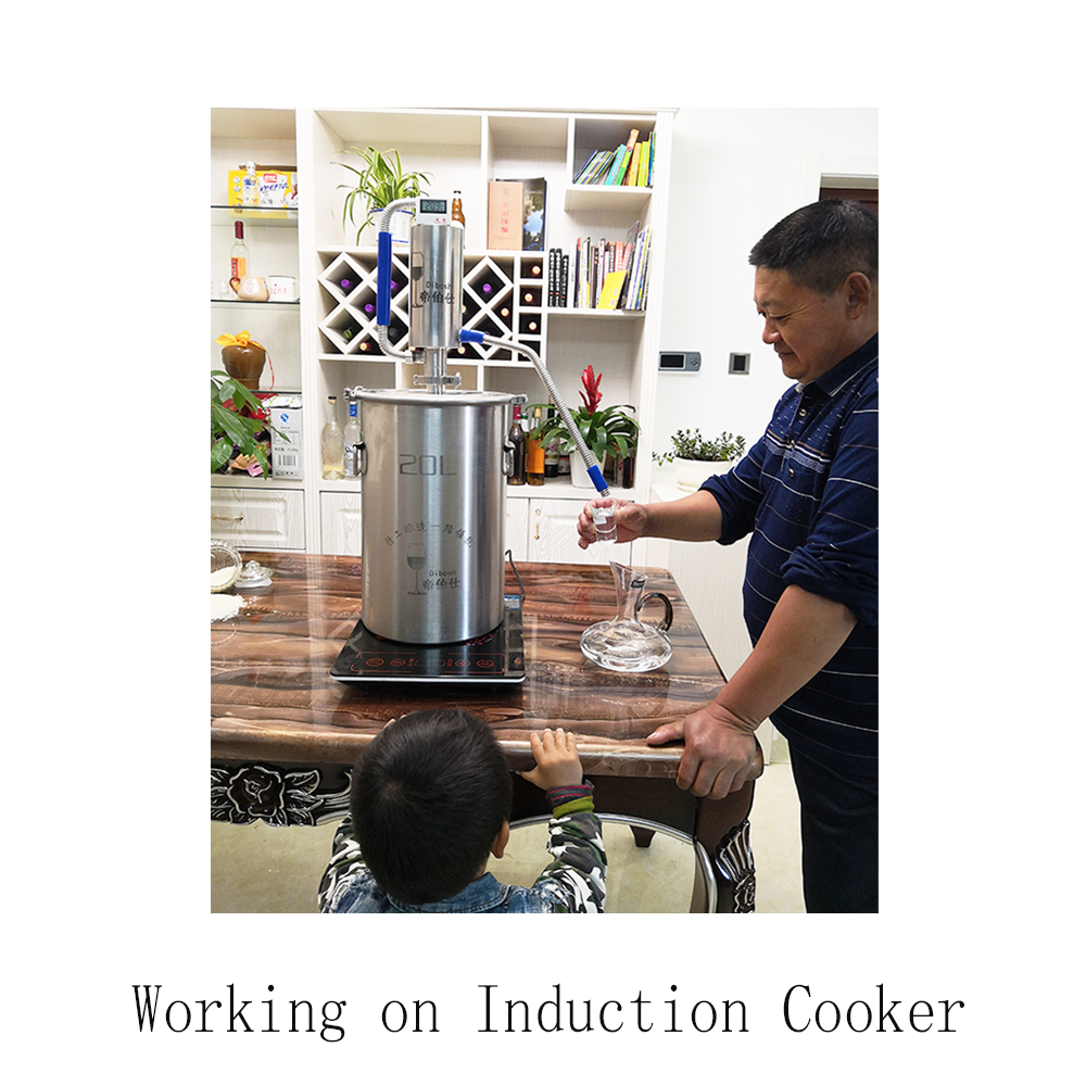 35L Mini Distilling Machine Moonshine Homebrew Distiller Brewing Alcohol Mashine Distiller
