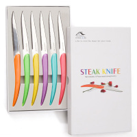 6pcs Rainbow Steak Knives Wedding Gift Multicolor Dinner Knife Stainless steel Table Knives Colorful Acrylic Handle Flatware 9''