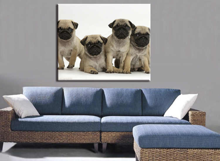 1 pieces / set High-definition modern abstract Fashion Five Animal Dog Canvas Big Print Poster Wall Picture Home Decor Painting
