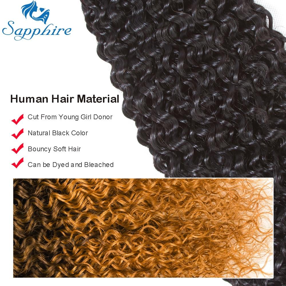 Sapphire Kinky Curly Human Hair 3 Bundles With Closure Brazilian Hair - Hair Salon Supply - Photo 2
