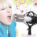 BM-800 Professional Cardioid Condenser Broadcasting Studio Recording Microp L#E