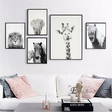 Black And White Horse Giraffe Animals Posters and Prints Wall art Decorative Picture Canvas Painting For Living Room Home Decor