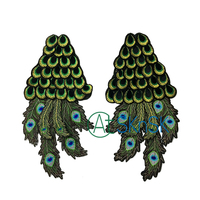 1 Pair High Quality Fashion Clothes Sweater Embroidered Wings Diy Large Peacock Tail Lace Fabric Patch