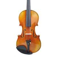 Free Shipping Copy Antonio Stradivari Cremonese 1716 Model Violin FPVN01 With Canvas Case And Brazil Bow