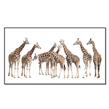 Top Sale Wall Deocr Canvas Painting Giraffe series Modern Printed Oil Pictures Living Room 201807-13