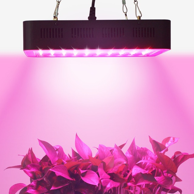 Populargrow 300w led grow light full spectrum for hydroponic populargrow 300w led grow light full spectrum for hydroponic greenhouse commercial medical plants veg flower growing mozeypictures Gallery