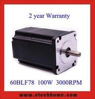 60 mm Brushless DC Motor 48V 100W 3000rpm