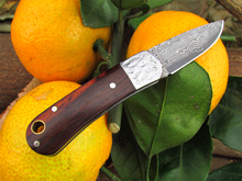 Mini Damascus steel folding knife handmade rosewood gift knife Portable outdoor camping pocket knife
