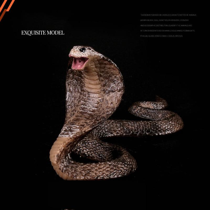 Figures Educational-Toys Animal-Model Cobra Naja Reptiles Kids Gift Wild Big Children