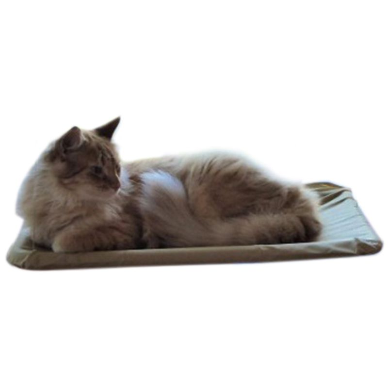 Cat pet comfortable bed Terrace Easy attachment to window sucker typeCat pet comfortable bed Terrace Easy attachment to window sucker type