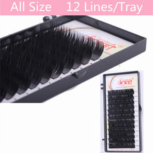 NEWCOME 1 PC 0.05 0.07 0.10 0.12 0.15 0.20 0.25 BCD Curl 12 Rows/Tray Volume Eyelash Extension Mink False Fake Eyelash Extension