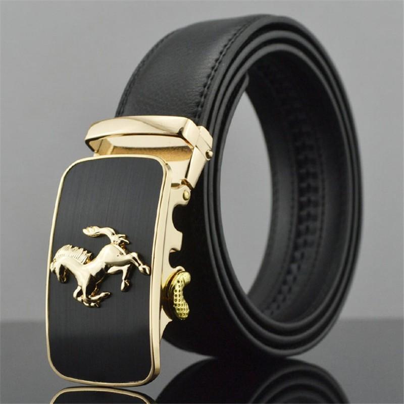 cinto dourado, cinta dourada, cinto cavalo dourado, imagem de cavalo
